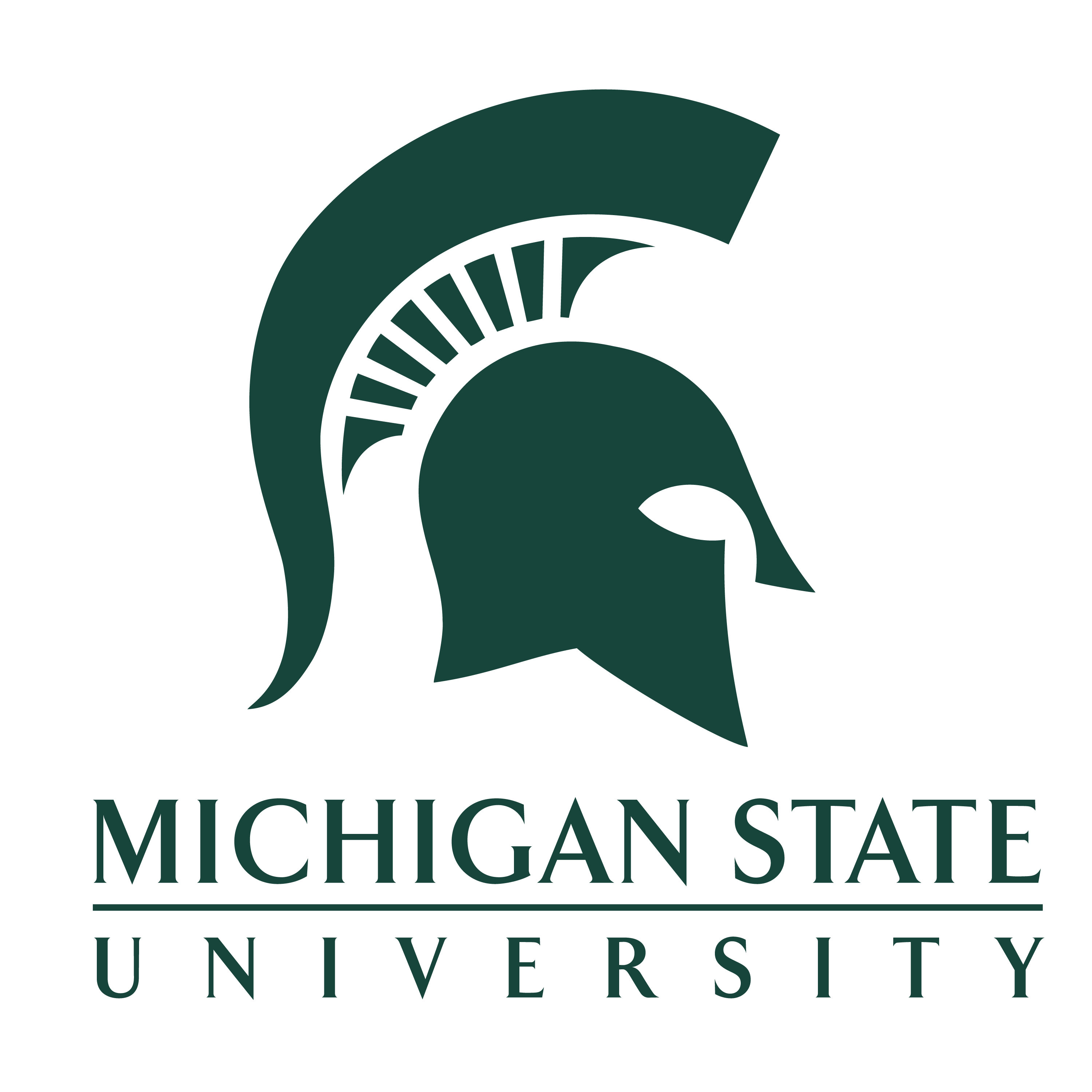 Collaborator: Michigan State University